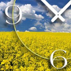 Digital Designer Art Feld Designer Wanduhr modernes Wanduhren Design leise kein ticken DIXTIME 3D-0379