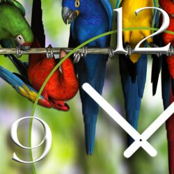 Digital Designer Art Papageien Designer Wanduhr modernes Wanduhren Design leise kein ticken DIXTIME 3D-0343