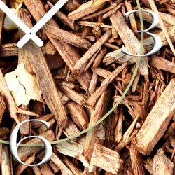 Natur Holz Zweige Designer Wanduhr modernes Wanduhren Design leise kein ticken DIXTIME 3D-0298