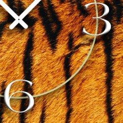Animalprint Fell Tiger Designer Wanduhr modernes Wanduhren Design leise kein ticken DIXTIME 3D-0295