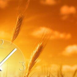 Wanduhr XXL 3D Optik Dixtime Sonnenuntergang Kornfeld 50x70 cm leises Uhrwerk GR-020