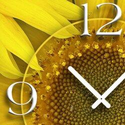 Sonnenblumen Designer Wanduhr modernes Wanduhren Design leise kein ticken dixtime 3D-0148