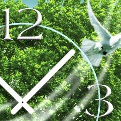 weiße Taube Baum Designer Wanduhr modernes Wanduhren Design leise kein ticken dixtime 3D-0101