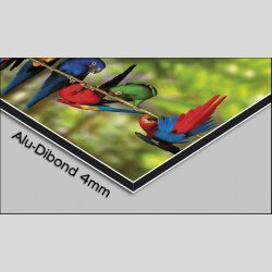 Digital Designer Art Sunset Designer Wanduhr modernes Wanduhren Design leise kein ticken DIXTIME 3DS-0373